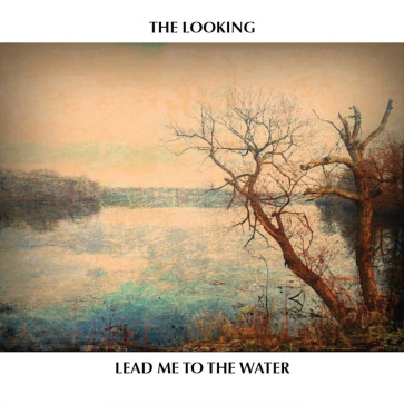 The Looking Cover