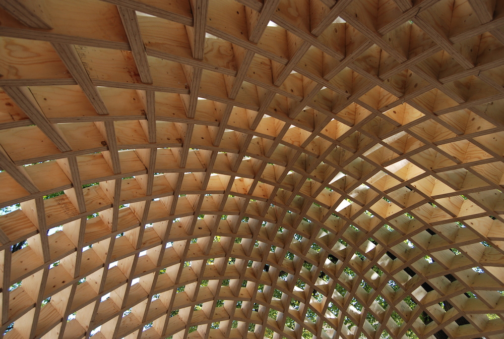 canopy 01_WS.jpeg