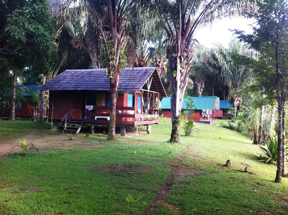 Pingpe Resort