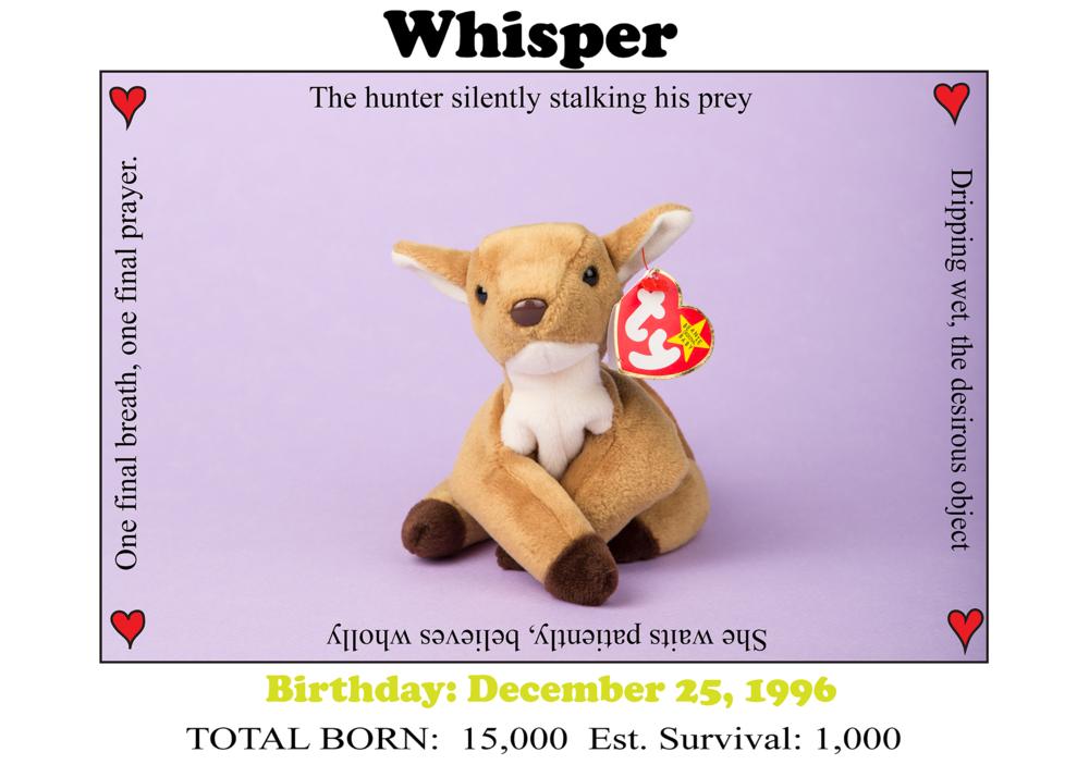 whisper_web.png