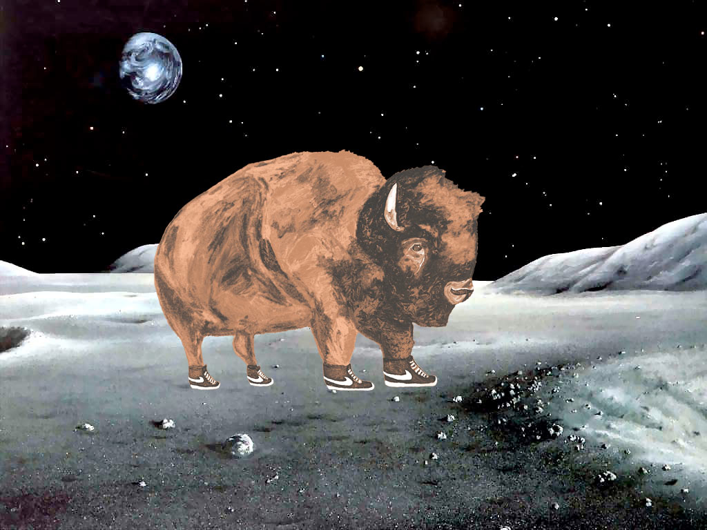 """Houston, the buffalo has landed."""