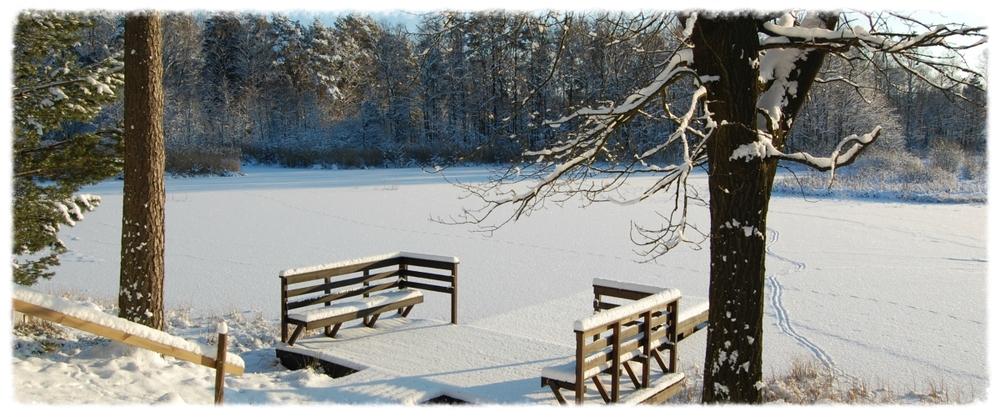 wintersteiger1200x500.jpg