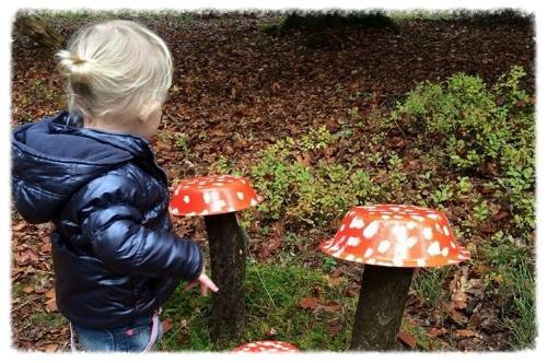 paddenstoel.jpg