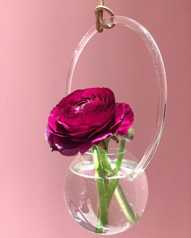 Rain vase by Lisa Hilland, meant to catch the light in a window (or room) like a drop of rain. Here against a smooth @barrisol.to background. @sthlmfurnfair @trendgruppenpr @lisahilland #lisahilland #glasshangingvase #delicateandbeautiful #Swedishdesign #swedishglass