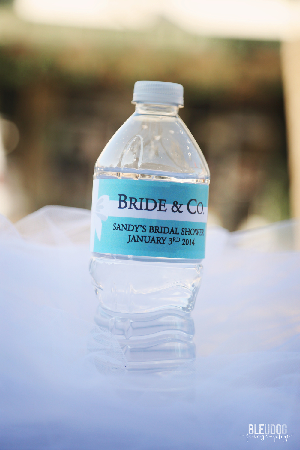 bride & co bridal shower games