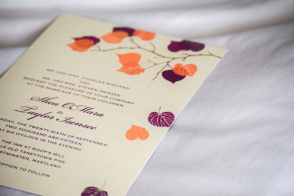 eco friendly wedding invitations, inexpensive customizable wedding invitations - fall wedding invitations
