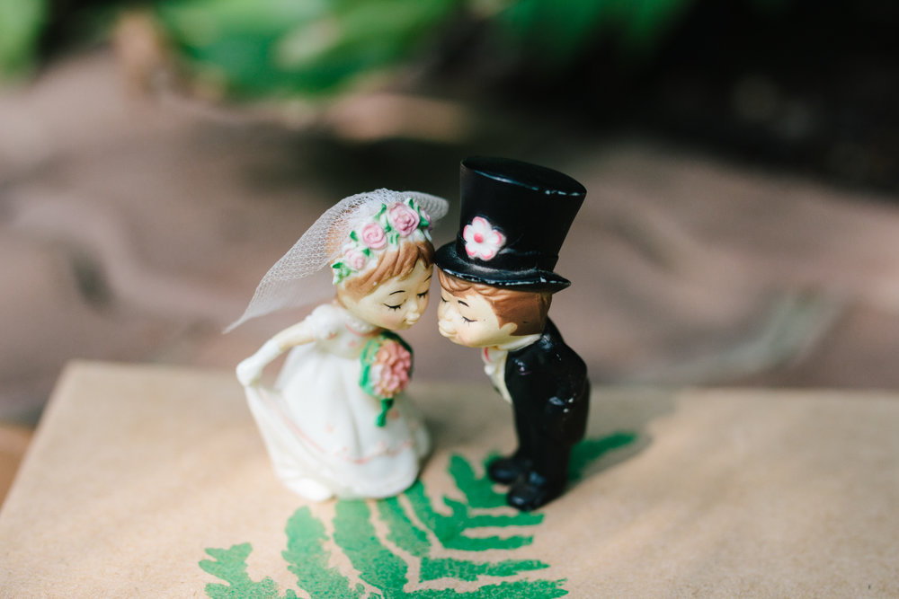 Cute Cake Toppers - A Botanical Gardens Budget Wedding - From Britt's Eye View Photography