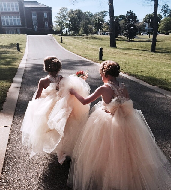 Light Pink - Blush Tulle Poofy Flower Girl Dresses