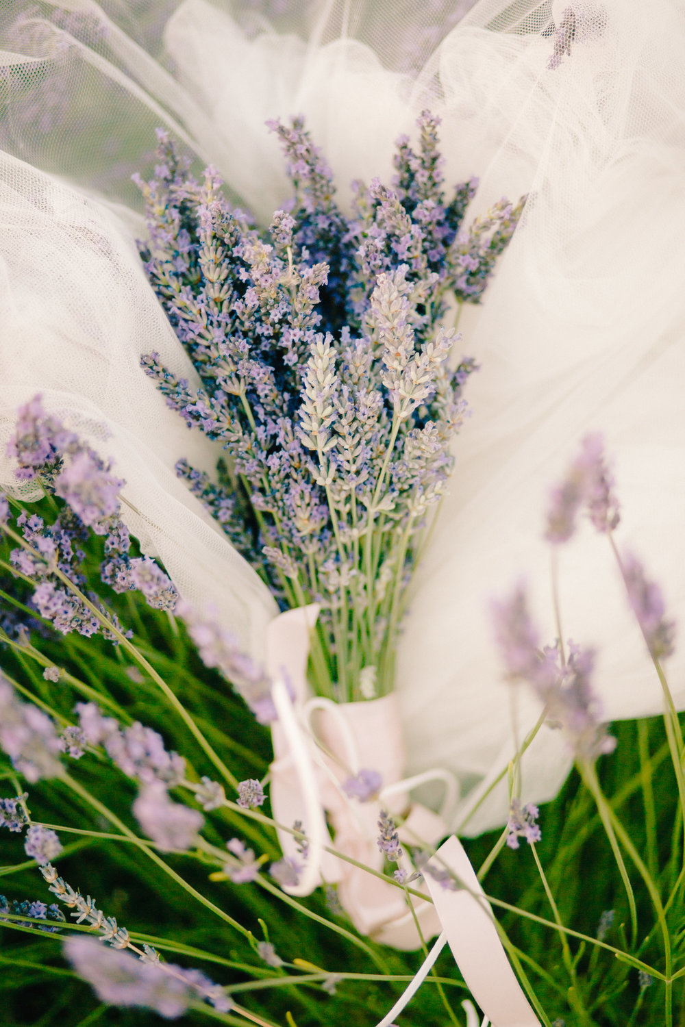 Lavender Field Engagement Photos - Guadalajara Spain Lavender Field - Alla Yachkulo Photography -- Wedding Blog-The Overwhelmed Bride