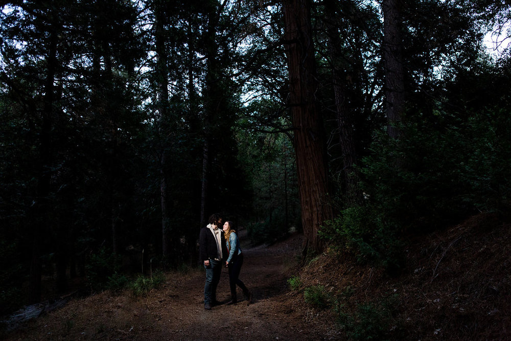 A Carlsbad Forest Engagement Session - Southern California Wedding Photographer - Alex Bruce Photography -- Wedding Blog - The Overwhelmed Bride