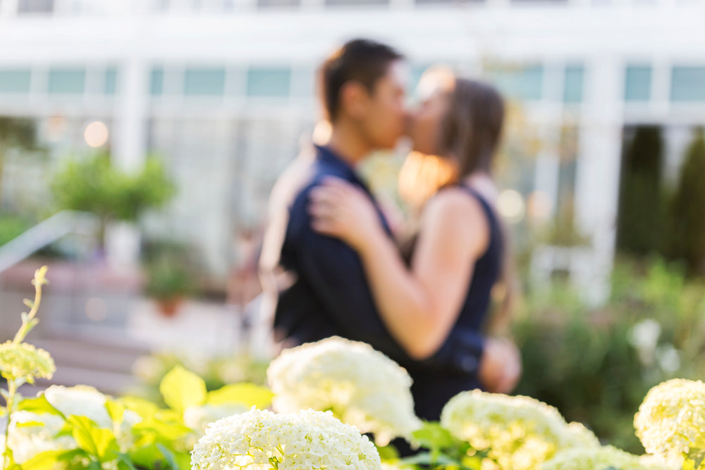 Denver Botanical Gardens Engagement Photos - Colorado Springs Wedding Photographer -- Wedding Blog - The Overwhelmed Bride
