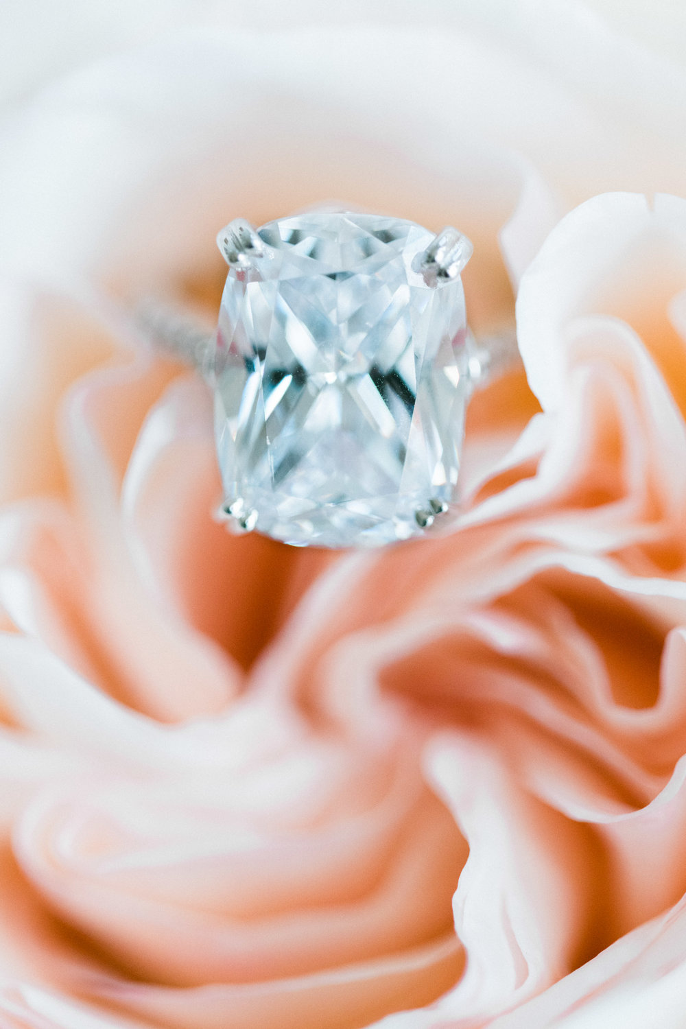 Solitaire Wedding Ring - Pennsylvania Private Estate Wedding - Low Back Wedding Dress