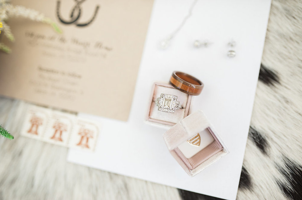 Gorgeous Engagement Rings - Iowa Farm Wedding - Private Estate Weddings