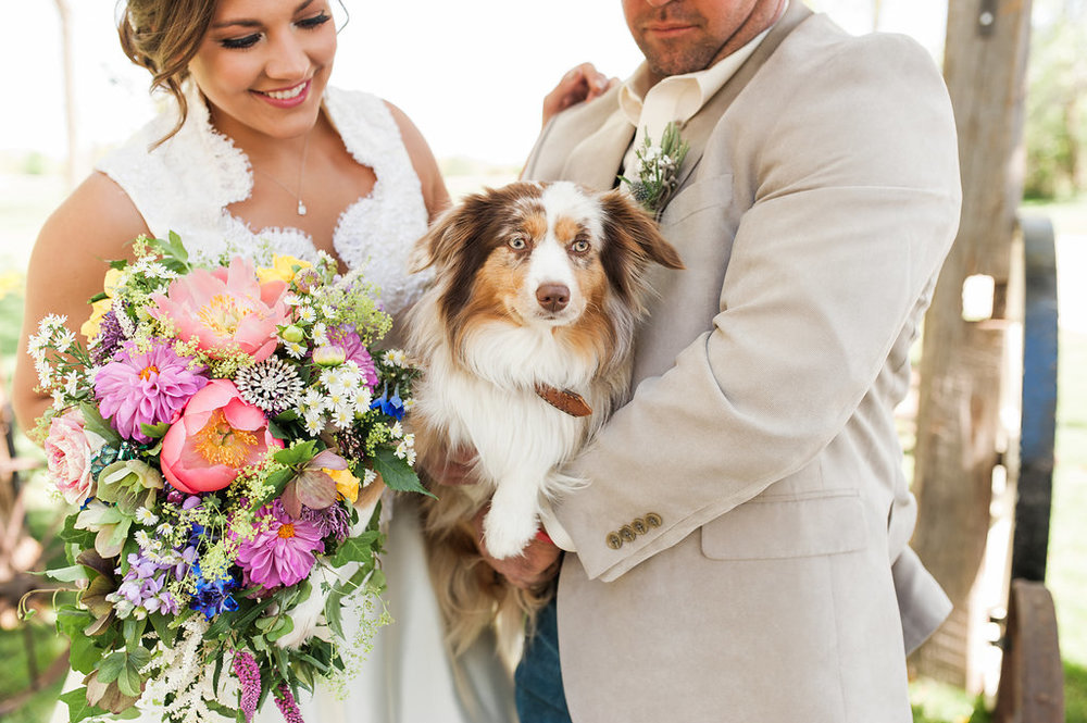 Dog Ring Bearers - Iowa Farm Wedding - Private Estate Weddings