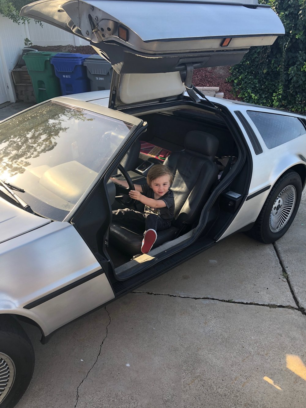 EmmettHoey_DeLorean.jpeg