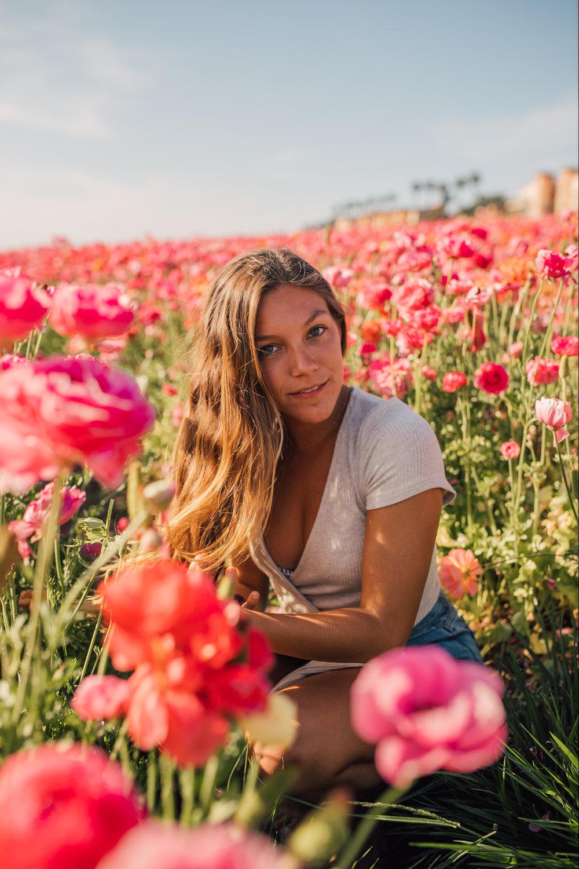 FlowerFields-7.jpg