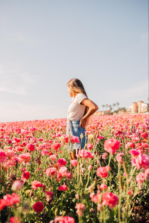 Flower Fields with Friends -