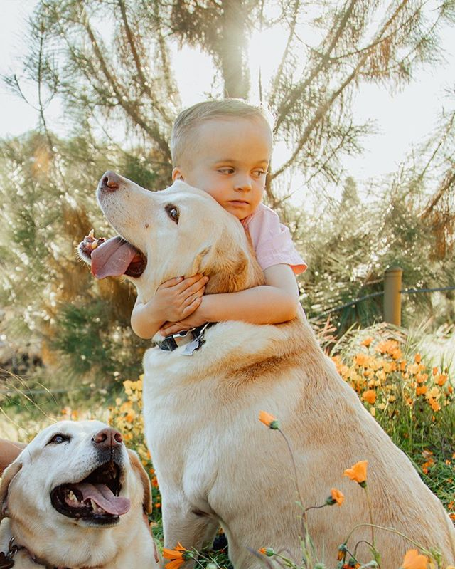 A man's best friend but also a boy's first friend 💛 don't forget to give your pet some good cuddles today 😌🐶🐱 #lifewithpets