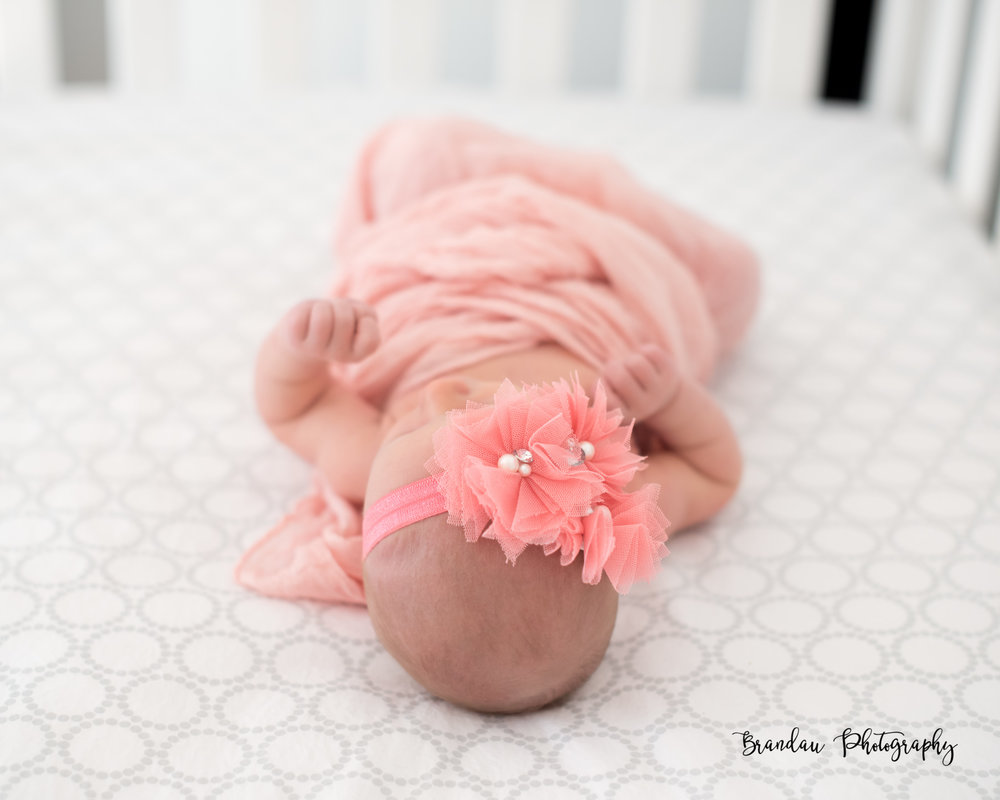 Brandau Photography- Newborn Girl - Central Iowa - Ankeny Iowa
