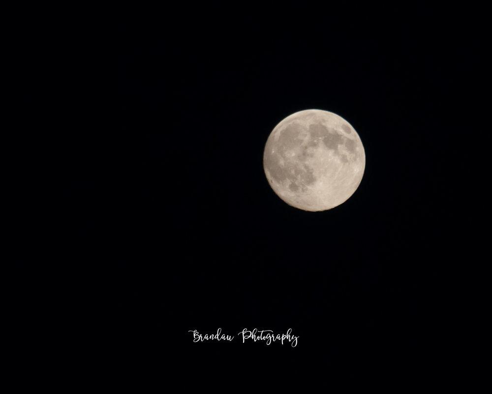 Brandau Photography - Full Moon - Iowa