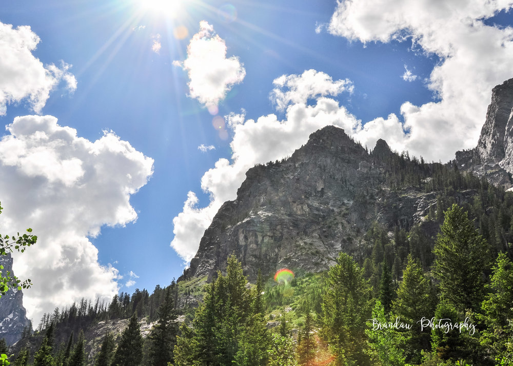 Brandau Photography - Grand Tetons National Park