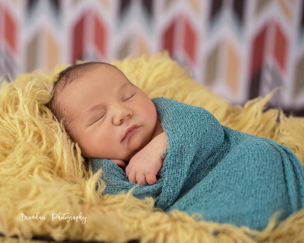 newborn swaddled_Brandau Photography.jpg
