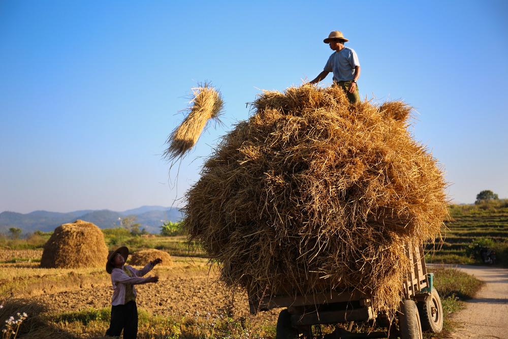 Travel Myanmar-7.jpg