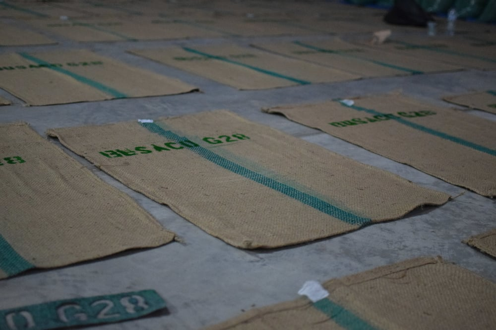 labeling bags.JPG