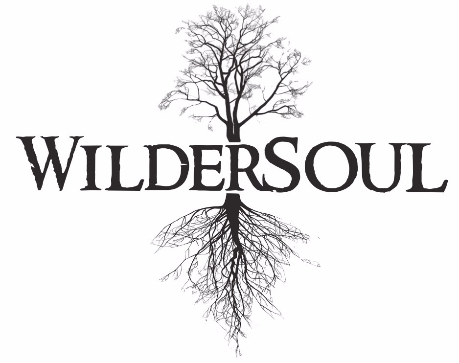 WilderSoul logo.jpg
