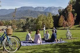 ringer-reef-picnic.jpg