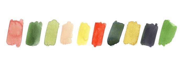 color 2.jpg