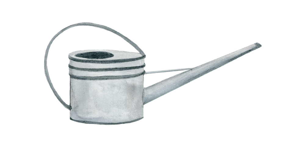 watering-can_web_2016.png