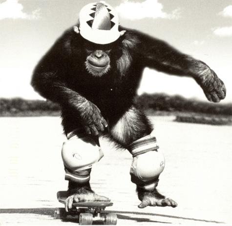 Funny-Skateboarding-10.jpg