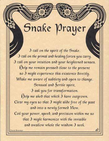 c9f31e5ff4f909f396cbf0767d33115d--snake-spirit-guide-spirit-animal-snake.jpg