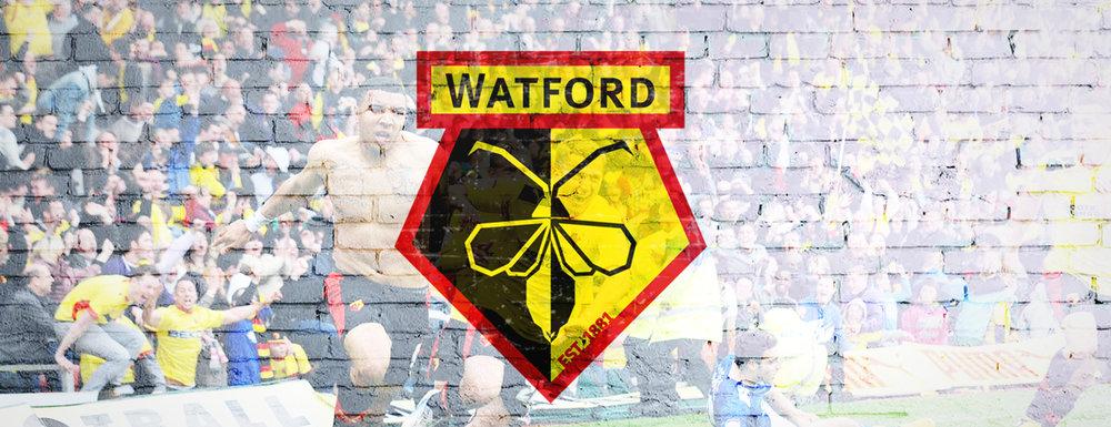 Watford FC -BEA Rebrand6.jpg