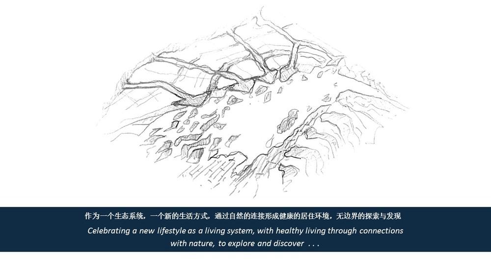 Morphis Qinhuangdao 1-3.JPG