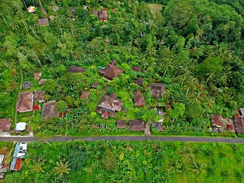 birdview-resort-1.jpg