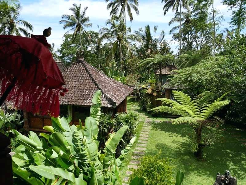 a-bali-jungle-retreat-surrounded-by-lush-greenery-the-resort-home-improvement-stores-near-my-location.jpg