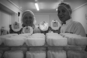 Caws Cenarth Cheese