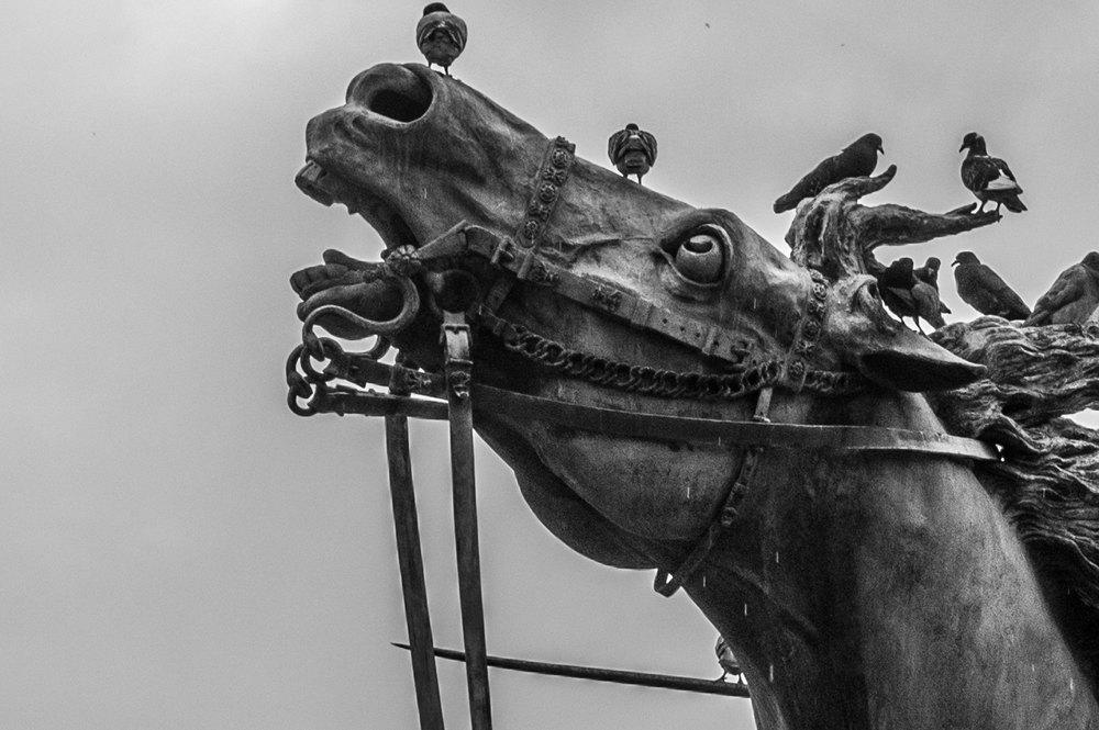 statue-horse.jpg