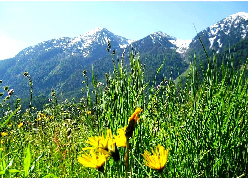 Sommer Panorama 1_Karköpfe.jpg