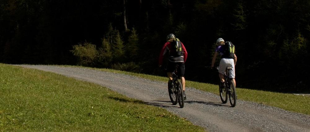 Radwanderer auf Mountainbike Rückansicht.jpg