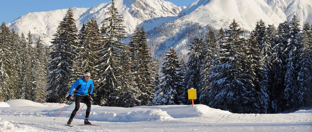 Skater vor Tannenwald.jpg
