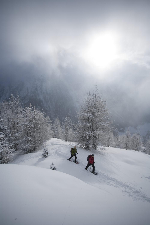 Schneeschuhwandern in Sölden.jpg