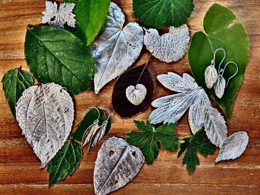 Silver Leaves New.JPG