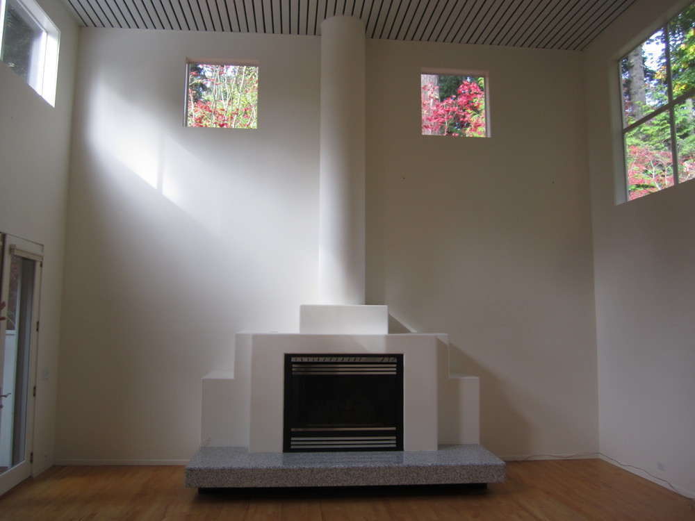 fireplace renovation — barnett adler