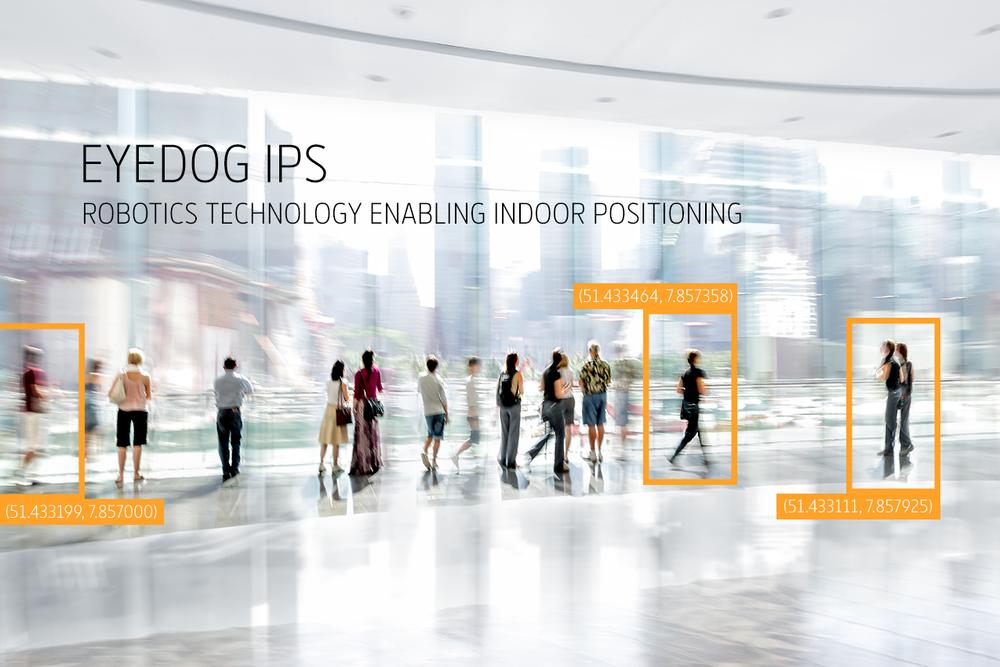 Eyedog-IPS-2.png