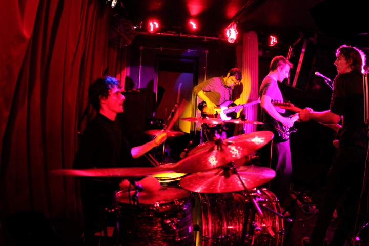 Parallel Animals at Water Rats.JPG