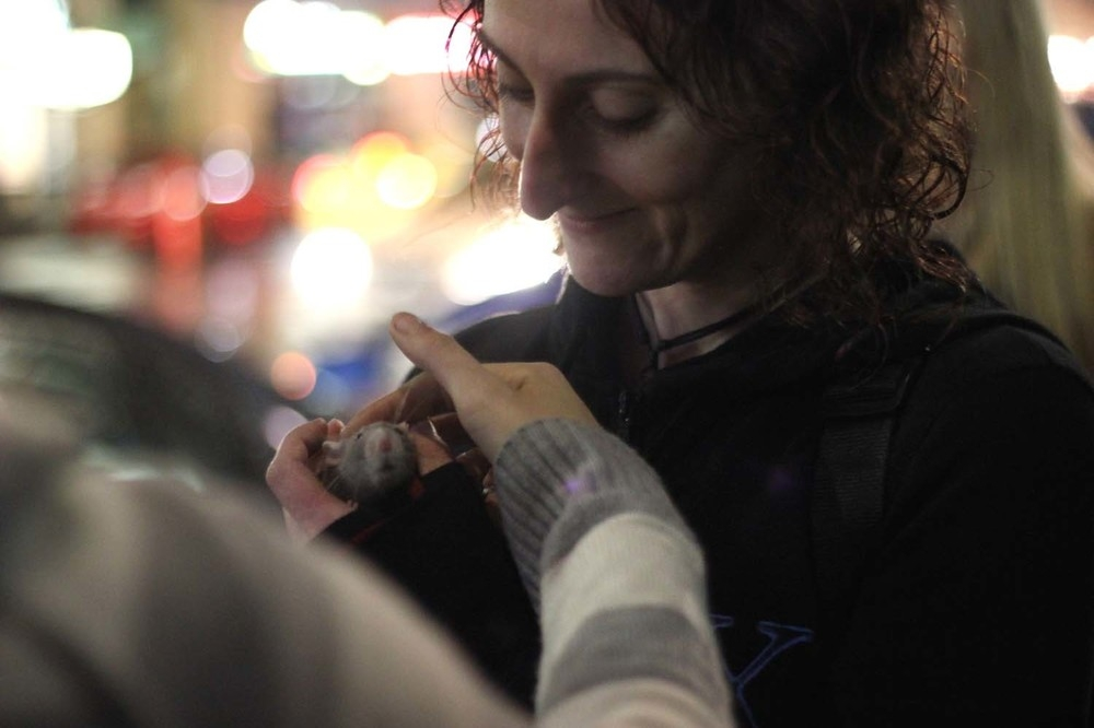 ANONYMOUS X VOLUNTEER NAT HOLDS DALLAS, A PET RAT OF ONE OF THE WOMEN THEY MET TONIGHT.