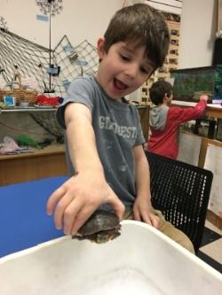 Turtle kid.JPG